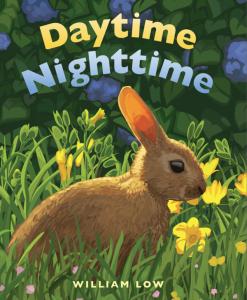 daytimenighttime