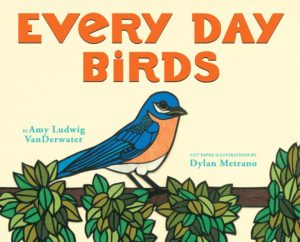 every-day-birds