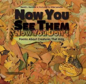 now-you-see-them-now-you-dont